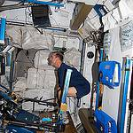 Astronaut Rick Mastracchio Exercises on ARED