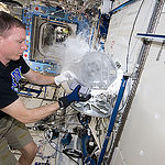 ISS043E207615 (05/18/2015) --- Expedition 43 Commander Terry Virts on the International Space Station works with experiment samples stored inside one of the station